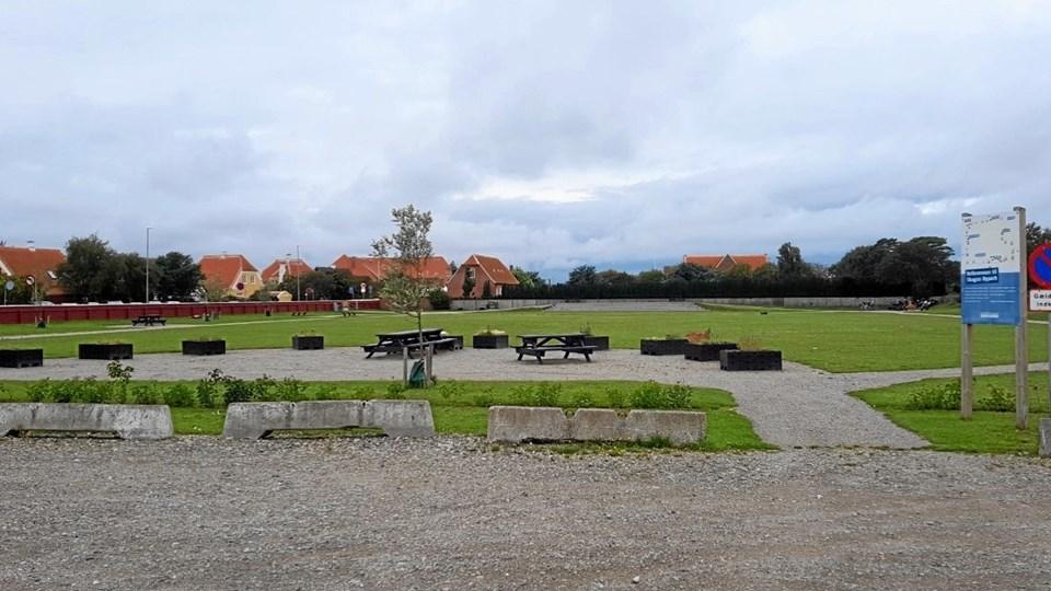 Skolemarken - eller Skagen Bypark - ligger nærmest uberørt hen. Der har ellers været store forhåbninger til området. Foto: Ole Svendsen