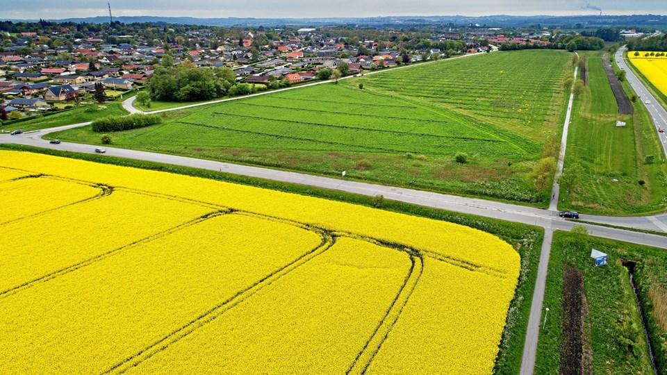 Det kommende boligområde - den grønne mark - ligger imellem Klarup nord og Klarup Banesti. For at dæmpe støjen fra Egensevej etableres der en støjvold. Arkivfoto: Lars Pauli