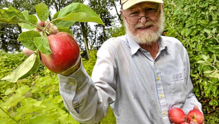Masser af frugt hos Gravenhøj
