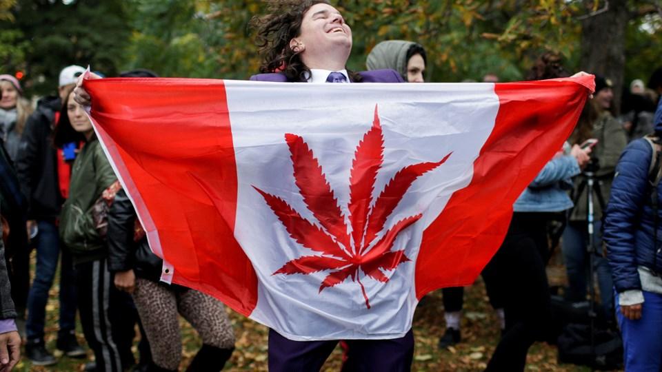 Der var blandt mange stor jubel i Canada, da cannabis blev legaliseret den 17. oktober 2018. Men der er mange opstartsproblemer med det lovlige salg. (ARKIV)