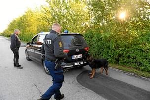 Stor politistyrke leder efter dement kvinde