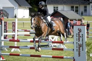 Stort ridestævne aflyst på grund af syge heste