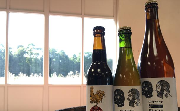 Er du vild med øl? Aalborg får ny stor ølfestival