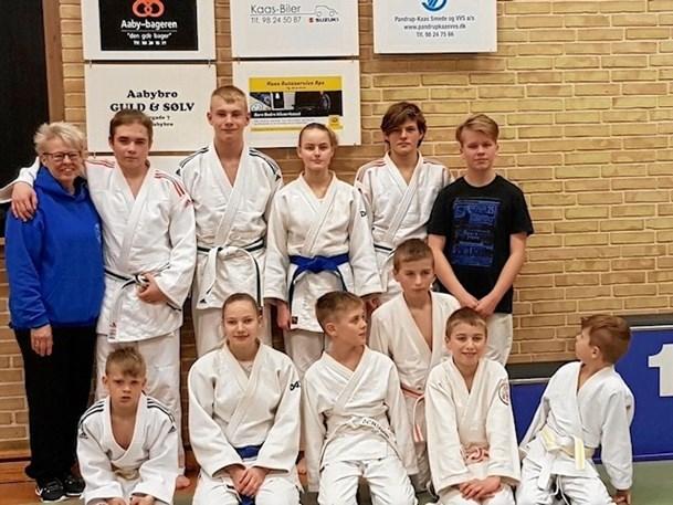 Vendelbomesterskab i judo
