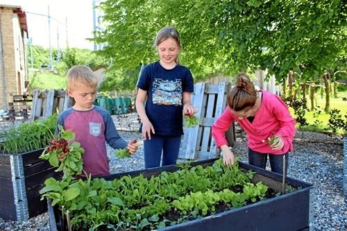 Også pasning af haver er en aktivitet, 4H vægter højt. Privatfoto