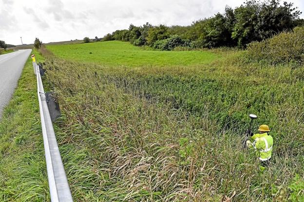 Ikke alle steder er der bare rabat. Her måles derop i en sump tæt ved vejen ved Grurup. Foto: Ole Iversen