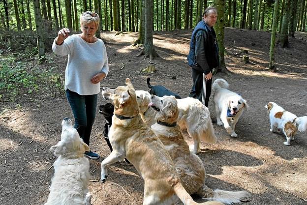 Kirsten er populær både hos hundene, når hun byder på hundekiks, og hos hundeejerne når hun kommer med brunsviger til kaffen. Foto: Niels Helver