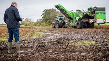 Kartoffelhøsten truet af mudder: Man skal da have en god psyke
