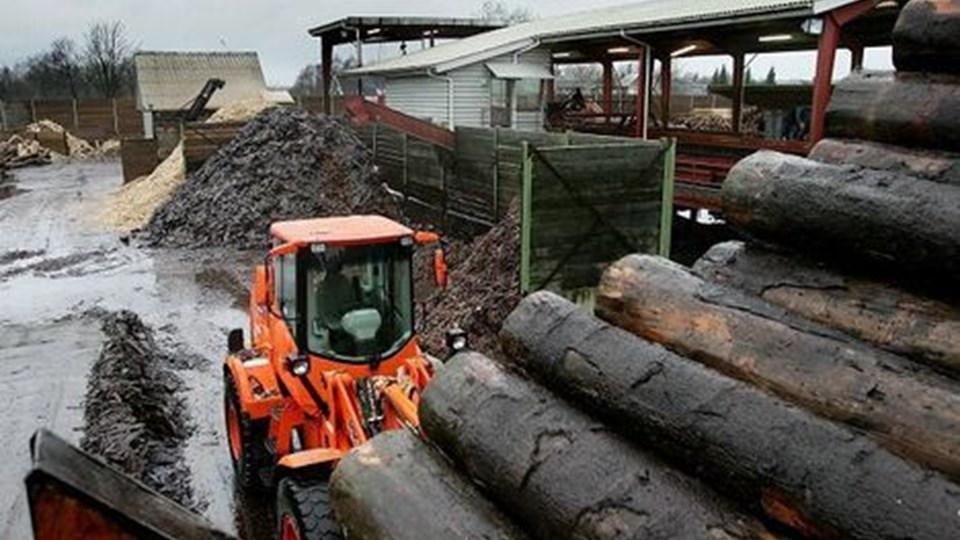 Rold Skov Savværk vil opføre biovarmeværk og afbrænde restprodukter som bark, savsmuld og spåner. Varmen vil savværket afsætte til Arden Varmeværk - hvis man i sidste instans får lov for Energiklagenævnet. Foto: Michael Koch
