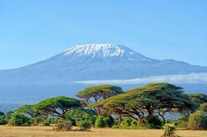 Tips om Afrika-rejser i Hobro