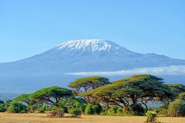 Snow on top of Mount Kilimanjaro in Amboseli. Arkivfoto