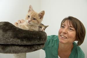 16 katte i nød reddet