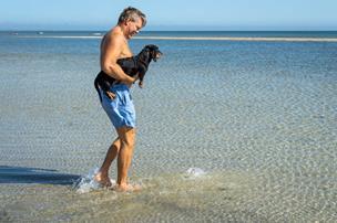 Ny forurening ved Jerup Strand: Nu vil man opklare, om tarmbakterier kommer fra kvæg, mennesker eller fugle