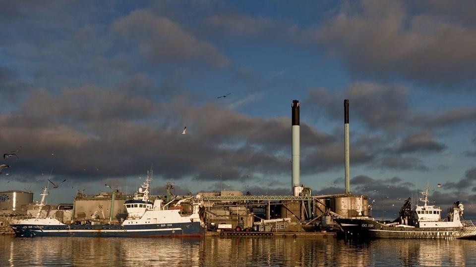 60 medarbejdere fra FF Skagen forlod torsdag eftermiddag deres arbejde i produktionen. Arkivfoto: Peter Broen