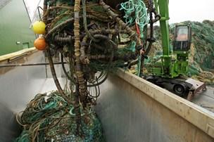 Nu skal dykkere fjerne fiskerløse net fra Limfjorden: Kan være dødsfælder for fisk