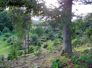 Havekreds lukningstruet efter 97 år med haveglæde