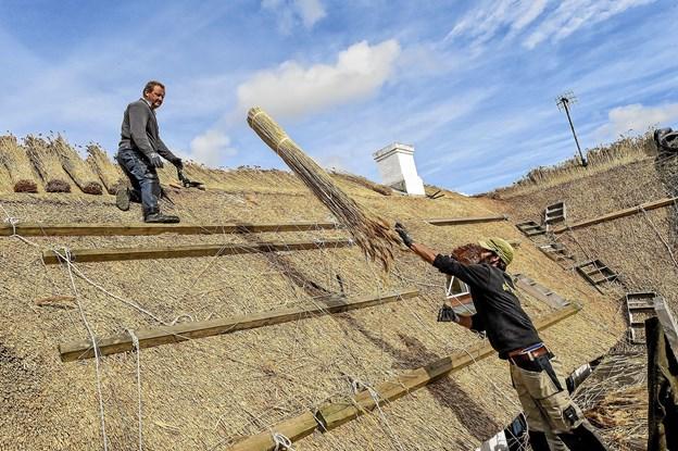 Per Ringgaard får et frisk bundt strå fra medhjælper Michael Fredslund, der oprindeligt er er udlært tømrer. Foto: Ole Iversen
