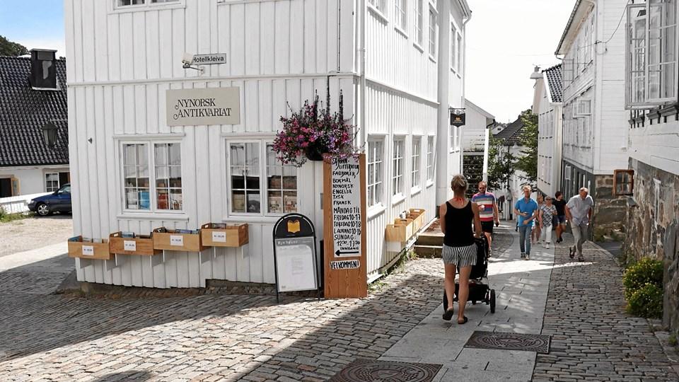 Nynorsk Antikvariat har 70.000 bøger fra de seneste 500 år og er bogbyens største arbejdsplads med 13 ansatte. Foto: Pia Daugaard