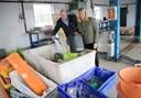 Salling fond støtter op om plast-genbrug: Sender stort beløb til iværksætterprojekt