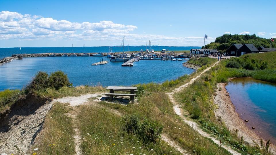 Ejerslev Havn og det naturskønne område omkring havnen skal lørdag 3. august danne rammen om en ny, lille festival. Det er en gruppe på fire personer, heraf flere med tæt tilknytning til Mors, der er initiativtagere til festivalen. Arkivfoto: Diana Holm