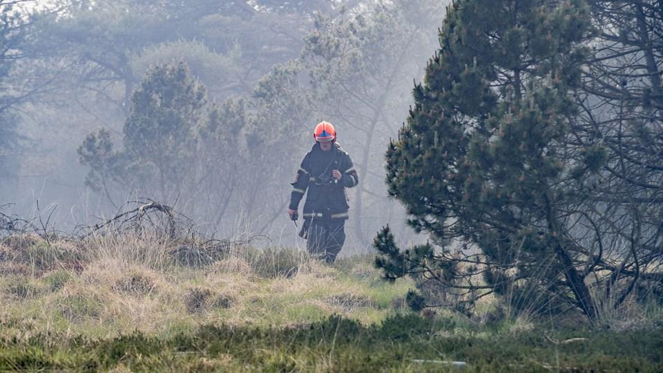 Sidste weekend kæmpede brandfolk med en brand på Randbøl Hede. Denne weekend har Beredskabsstyrelsen ekstra mandskab i hånden, hvis der opstår naturbrande. Foto: Michael Drost-hansen/Ritzau Scanpix