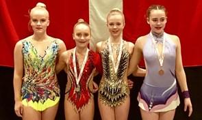 FG90 tog guldmedaljer i Silkeborg