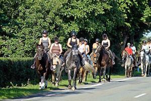 På lejr med hesten