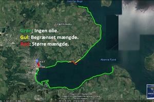 Enkelte kystområder er forurenet med olie i Aabenraa