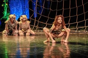 """Mowgli kan også danse: """"Junglebogen"""" er blevet til en fortryllende ballet"""
