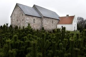 Møde om Serritslev Kirke