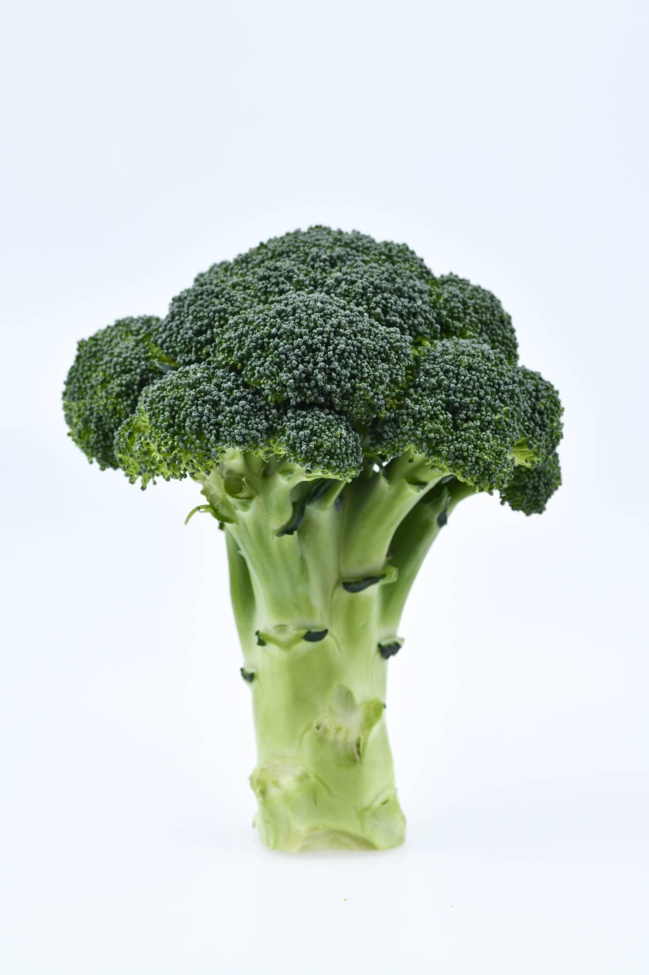 Løkkes forvirrende meldinger: Sådan blev broccoli til skyts i valgkampen