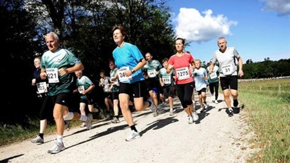 1341 har indtil videre tilmeldt sig maratonløbet i nationalparken på lørdag.Arkivfoto: Diana Holm