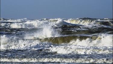 Nu får vi vind: Der er stormende vindstød i vente til Nordjylland
