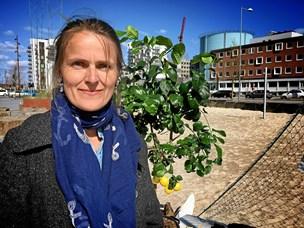 Ordkraft: Inge Eriksens Ark indviet i Aalborg