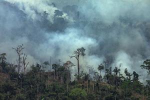 Tusinder af soldater kan sættes ind mod skovbrande