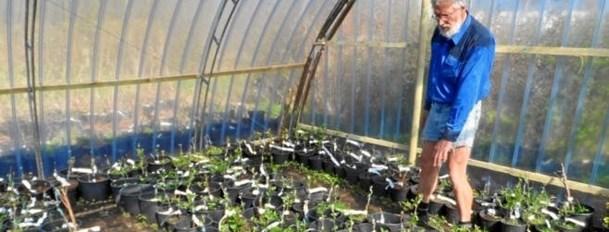Haveforening med et forårsprogram