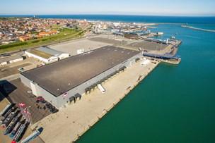 Millioner af norske laks slår et smut forbi nordjysk havn
