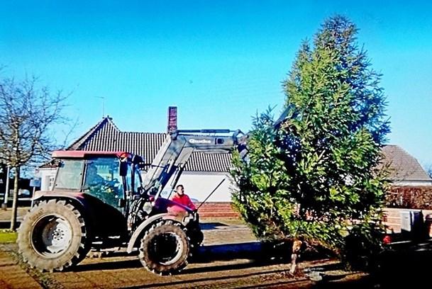Juletræet tændes på torvet i Rakkeby