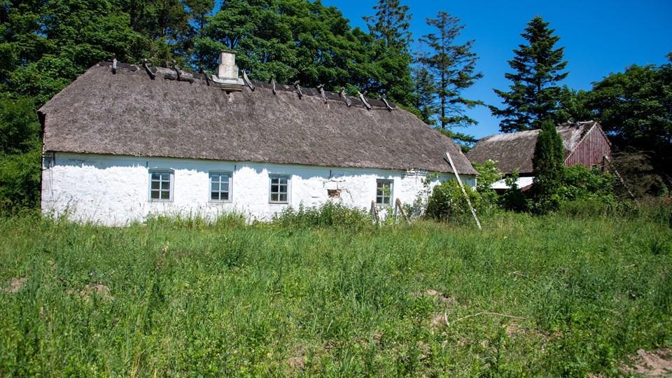 Skovhuset i Mølholt må gerne rives ned, selv om bevaringsforeningen og Kystmuseet anbefaler afslag på ansøgningen.