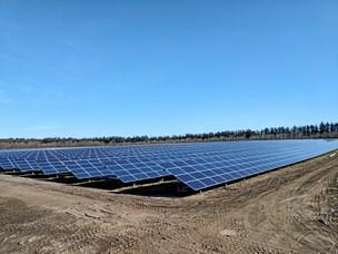 """Flere landmænd vil være """"solbønder"""": God forretning - også for klimaet"""