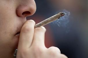 Er du ung og ryger hash? Så er du i fare for at få depression