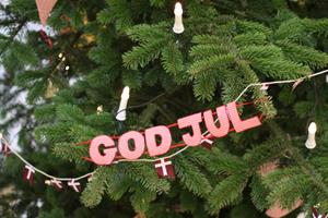 Her er hyggedræberen i juleferien