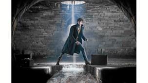 """Film: Harry Potter spin-offet """"Fantastiske skabninger"""" skuffer"""