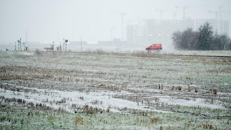De store mængder regn, der er kommet de seneste måneder, tager landbruget som et tydeligt tegn på, hvilke problemer klimaforandringerne bringer med sig. Foto: Henrik Bo