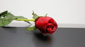 Rose til kunde hos Røde Kors