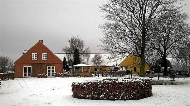 Julestue på Solgården