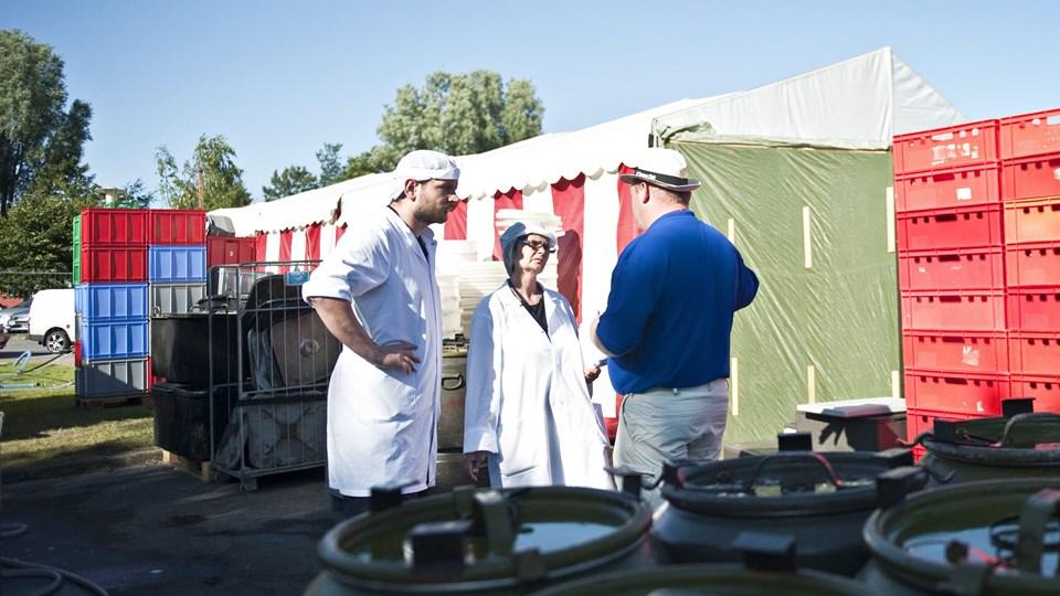 Hallen skal blandt andet bruges til bespisning - Beredsksabsstyrelsen stiller efterhånden så store krav til teltene, at de bliver uforholdsmæssigt dyre at stille op. Arkivfoto: Jesper Thomasen