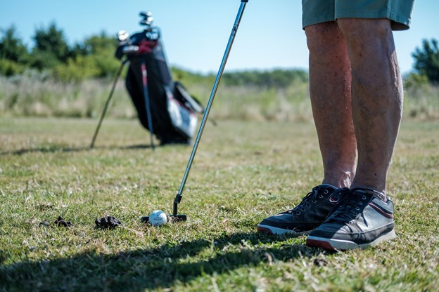 De mange fårelorte er et stort irritationsmoment for golfspillerne og gør spillet ekstra vanskeligt. Foto: Lasse Sand