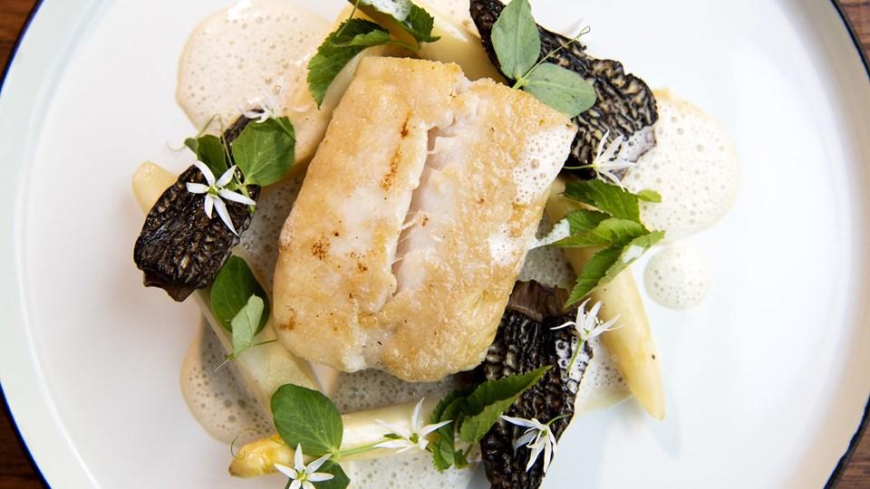 Struktur er gode til lækker fisk. Foto: Henrik Bo