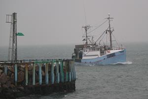 Fiskerikontrol: Minister vil have ens regler for alle fiskere i EU